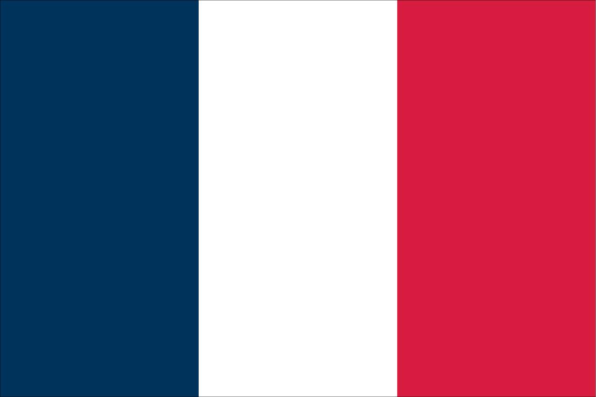 Bandera20Francia Análisis de Francia - Grupo A - Comunio-Biwenger